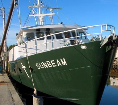 sunbeam1